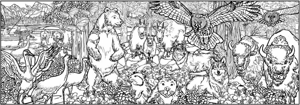Calgary Zoo - 1704
